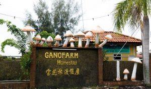 tanjung_sepat_Ganofarm