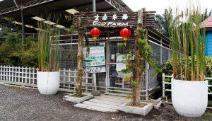 tanjung_sepat_eco_farm