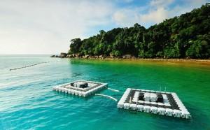 tioman-seapark