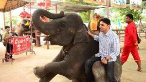 istana_gajah_Ayutthaya_05